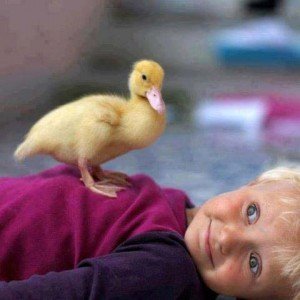Kiddo with duck