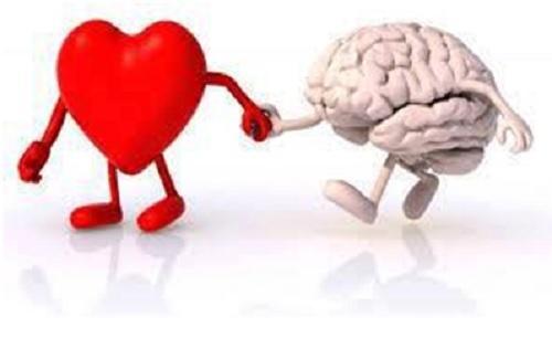 heart brian